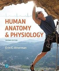 Human Anatomy and Physiology by Erin C. Amerman 2nd ed.